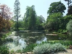 Kew Gardens (35)
