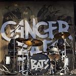Cancer Bats @ Bluesfest 2011
