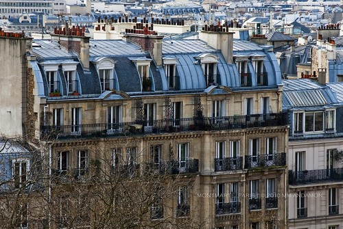 Parisian apartment buildings