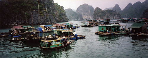 Cat Ba floating village, Halong Bay
