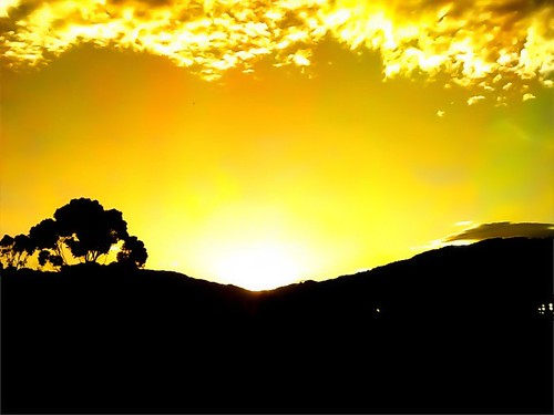 Sunrise (Medellín)