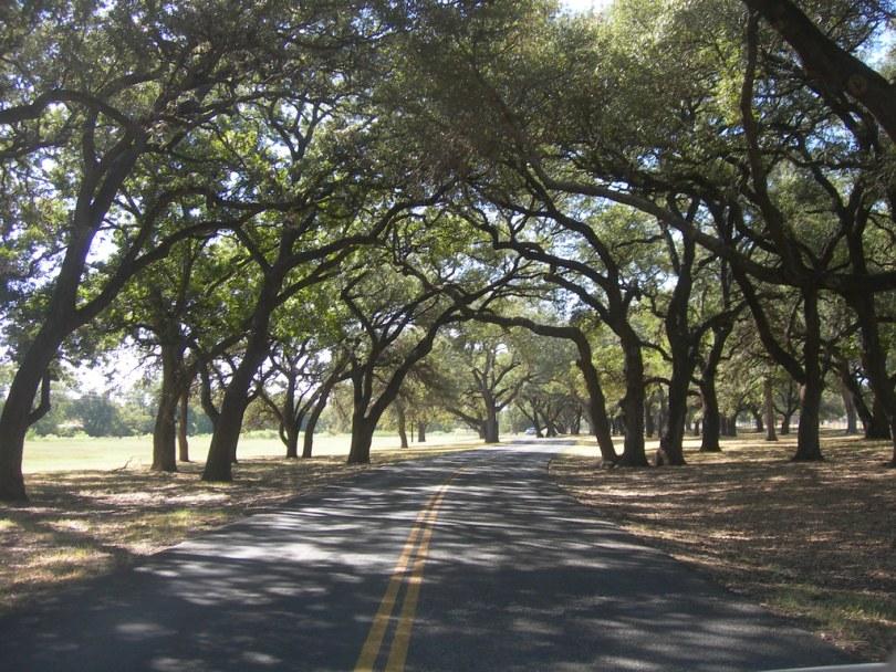 The LBJ Ranch Drive