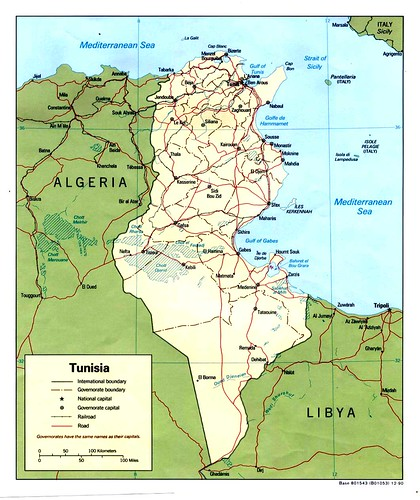 tunisia_pol_1990 gra