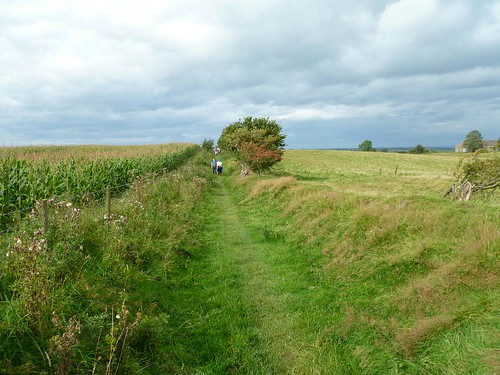 Looking towards the site of Milecastle 59