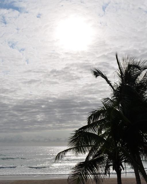 Tulum breakfast by the beach (4)