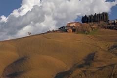 Soldati a difesa della collina - Soldiers in defense of the hill