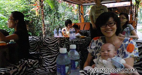 Riding on the zebra motif gourmet safari train