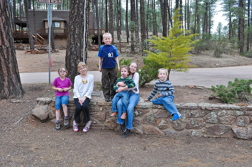 Cabin March 12-27