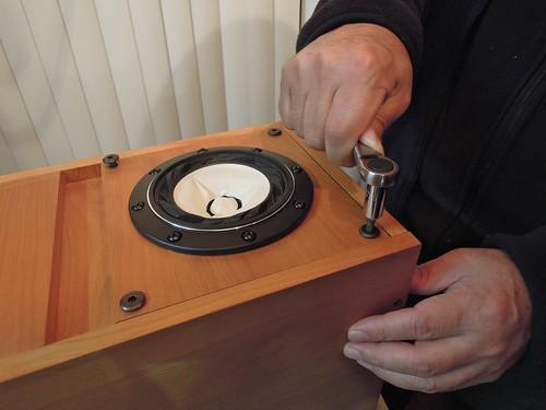 Replacing Fostex Speaker Units