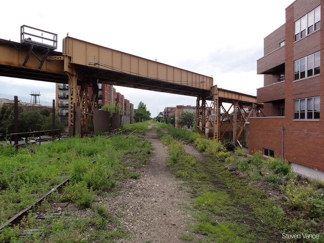 Blue Line viaduct high over the Bloomingdale Trail
