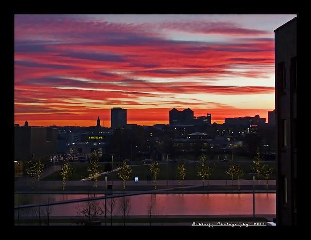 #331/365 Sunrise