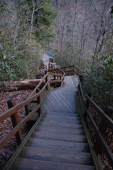 Stairs to Overlook