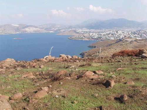 201110150091_landscape
