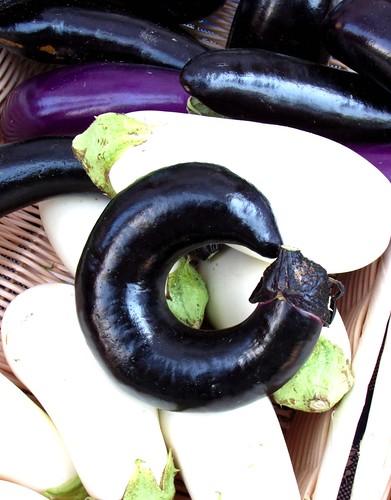 Croocked Eggplant