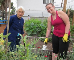 Community Garden Work Day