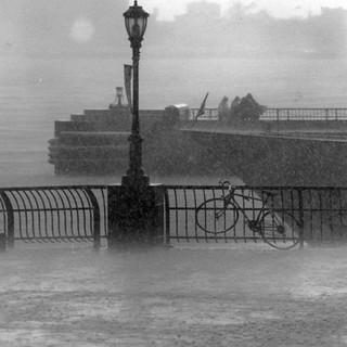 NY-rain-Wintergarden