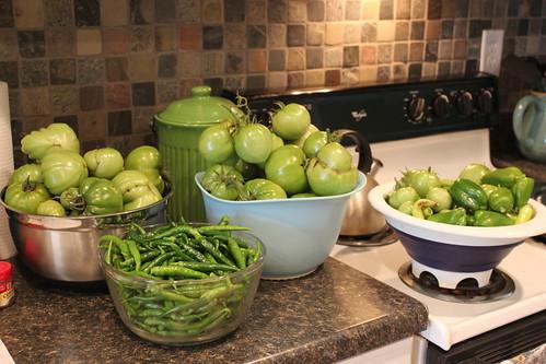 20111029. final harvest!