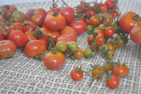Farmers' Market Assorted Tomatoes from Placita Roosevelt