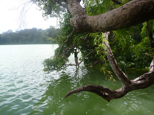 Lol using overhanging trees as a diving board