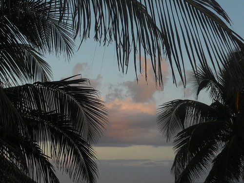 Tulum beach after sunset (4)
