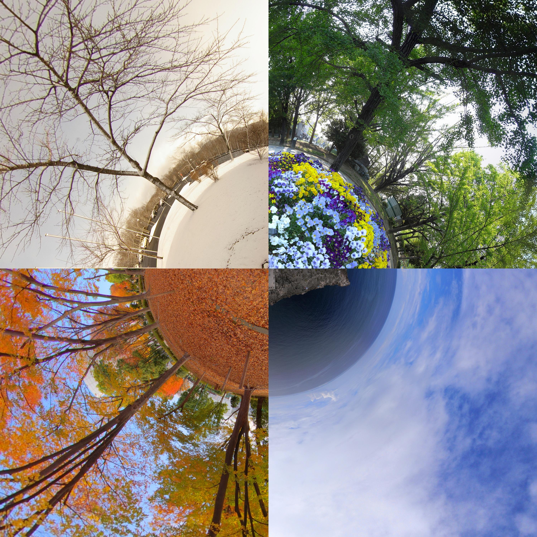 Four Seasons In Japan Flickr