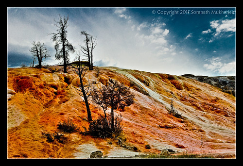 Mammoth Hot Springs, Yellowstone National Park by Somnath Mukherjee Photoghaphy