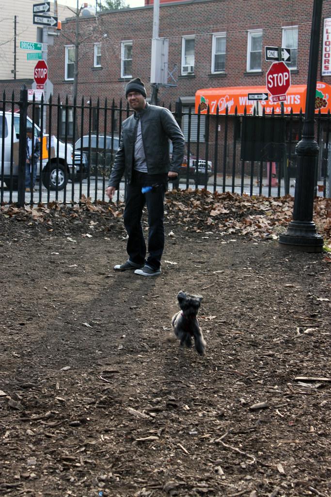 Bark Park 7