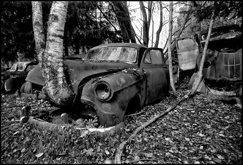 Car Cemetery III (Explored.) by Davidap2009