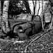 Car Cemetery III (Explored.)