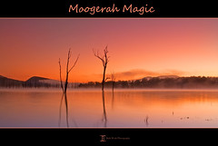 Moogerah Magic