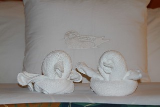 our towel ducks!