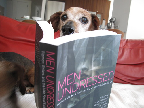 Wiener Dogs Reading Books: Men Undressed