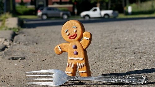 Gingy comes to a Fork in the Road - July 10th, 2011
