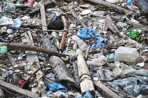 023pre-national-day-cleanup-lim_chu_kang-06aug2011[kpinto]