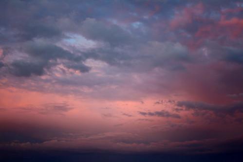 Ciel rose by aurelielaroye