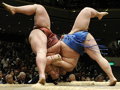 Sumo Wrestling, by Naohiko Hatta