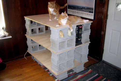 20110911 - ghetto TV stand + cats - IMG_3511
