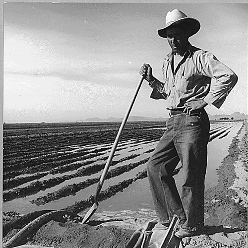 Eloy District, Pinal County, Arizona. Mexican irrigator. He came from Mexico 12 years ago...11/1940 - Library of Congress image
