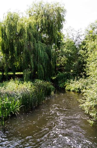 River at Charlecote Flour Mill