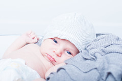 Blue Eyed Baby Titan