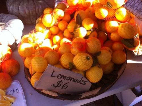 Lemonade at Subiaco Farmers Market