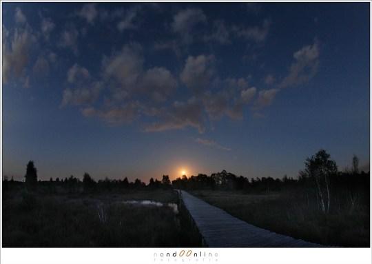Maanopkomst boven de knuppelbruggetjes van de Groote Peel