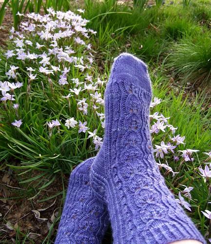 polly jean socks
