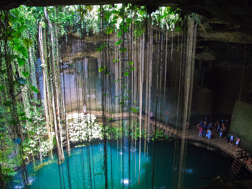 Ik Kil cenote. The trailing tendrils are the roots of trees growing on the surface