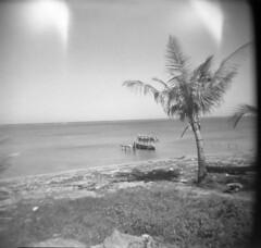 Punta Gorda, Roatan4