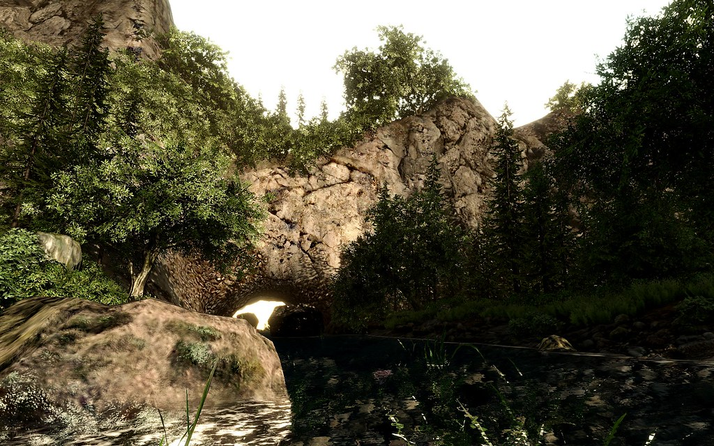 Crysis - My Forest