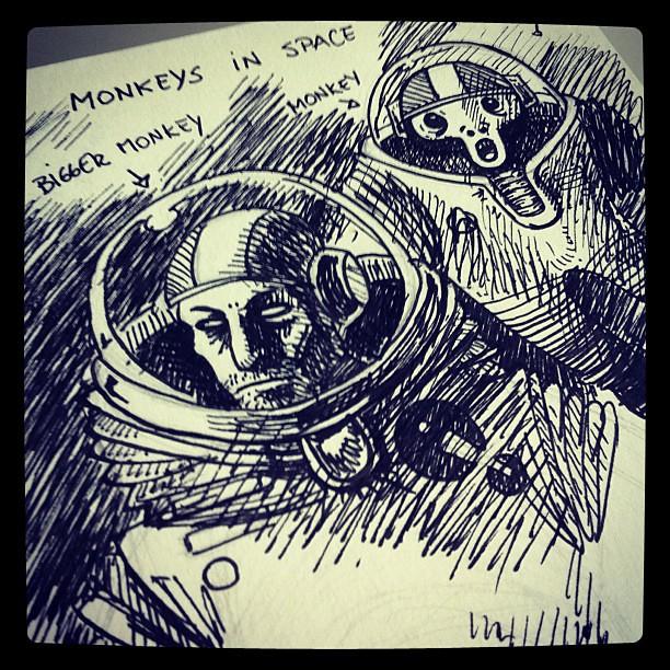 Monkeys in space 