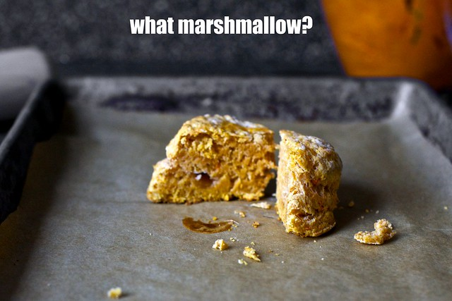 the disappearing marshmallow
