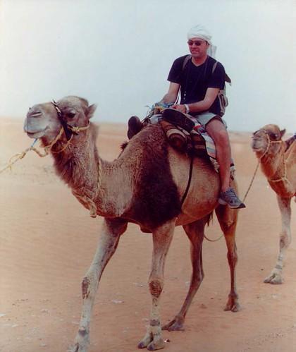 ferru cammello