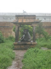 Nandhi in font of Kailasanathar shrine 6